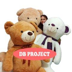 DB PROJECT